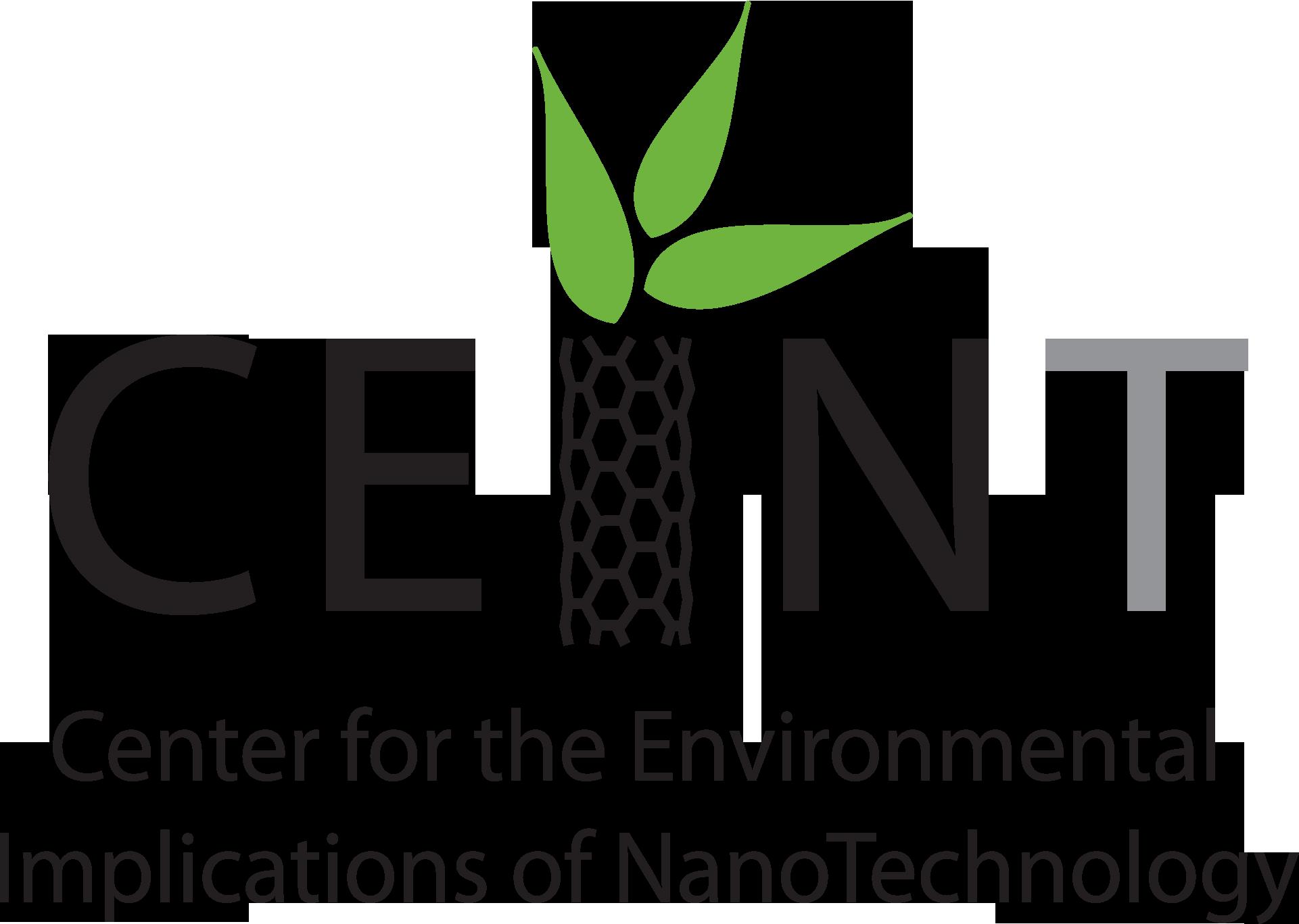 CEINT logo